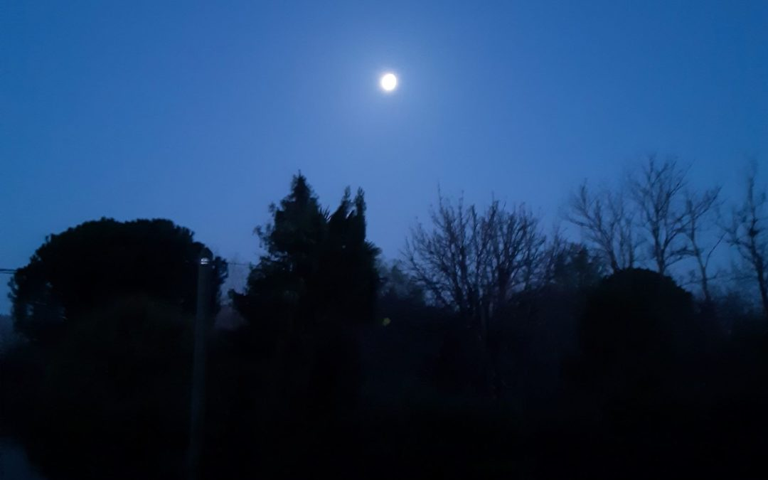1er Mars – Saison 2 – Jour 123